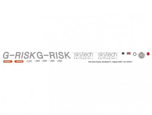 MD 500E - Skytech - G-RISK - Decal 81 - 1:35